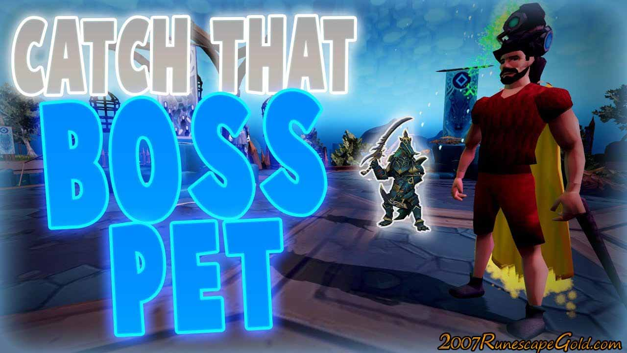 Some Of The Harder RS Boss Pets To Get